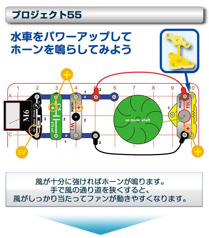 電脳サーキット エコロジー実験一例5